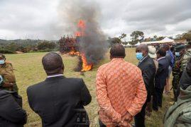 President Uhuru Kenyatta Presides Over The Destruction Of 5,144 Illicit Firearms