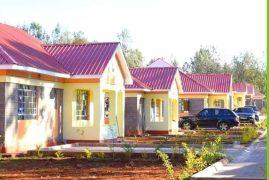 Diaspora:Mahiga Home Properties  :Call TERRY 254 718 332074