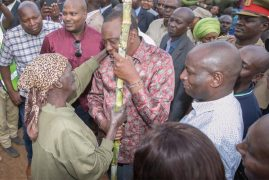 What my gift of sugarcane to president Kenyatta meant, granny explains