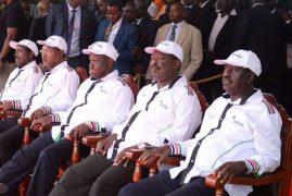 How Nasa leaders broke deadlock on flag-bearer choice