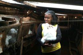 The graduate who chose rabbit farming over office job – Maureen Wanyaga