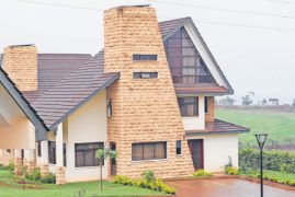 Home Afrika losses deepen as home sales slump
