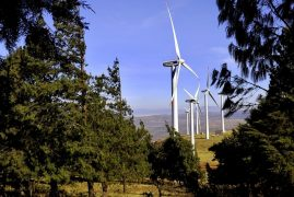 Wind park, worth nearly $1 billion, to spur renewable energy in Kenya's fast-growing economy