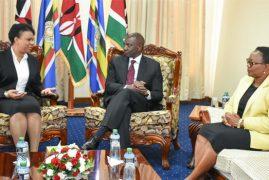 Kenya to borrow biological methods from Cuba to manage malaria