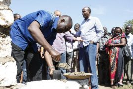 Bees Disrupt DP William Ruto's Event in Kwale