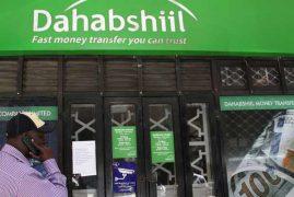 Money transfer company Dahabshiil still in operation, CBK says