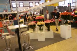 Kenya hosts 7th international flower trade expo-IFTEX