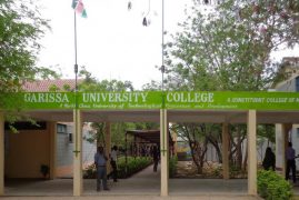 INVESTIGATION: Some of Garissa Terrorists Could Have Been Students