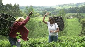 UK Based Chef's New Amazon Series Retraces Her Culinary Roots In Kenya After Dramatic Career Change