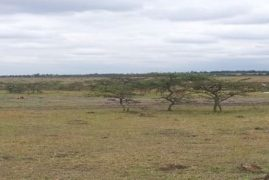 Kajiado land sale ban on