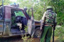 Seven Kenyan soldiers killed in jihadi ambush in Lamu county