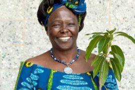 Secrets of Kenya's Nobel laureate Prof Wangari Maathai Sh150 million will